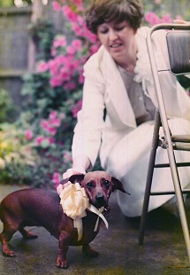 Bob Lamb's wife, DeeDee Lamb, on their wedding day with her dog, CoCoa © Pryor Center for Arkansas Oral and Visual History, University of Arkansas