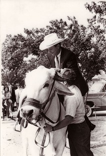 Tommy May riding a cow © Pryor Center for Arkansas Oral and Visual History, University of Arkansas