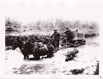 Mules pulling a wagon through the mud; photo provided by Frank McWilliams © Pryor Center for Arkansas Oral and Visual History, University of Arkansas
