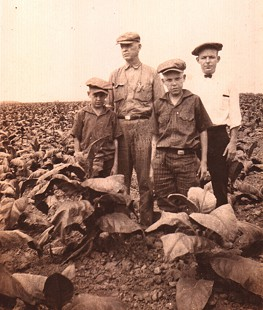 Archie Monroe (3rd from left) with his brother, Sanford Monroe; father, Thomas Archimedes Monroe; and cousin, Wade Willis, in a Kentucky tobacco field © Pryor Center for Arkansas Oral and Visual History, University of Arkansas