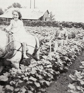 Betty Lou Stephens Thornton helps Keeling Lowe plow cotton on the Stephens's farm, 1937 © Pryor Center for Arkansas Oral and Visual History, University of Arkansas