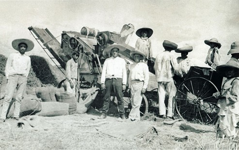 Bud Whetstone's maternal great-grandfather, G. I. Dill, in Mexico teaching Mexican farmers how to use the machine to harvest rice; 1922 © Pryor Center for Arkansas Oral and Visual History, University of Arkansas